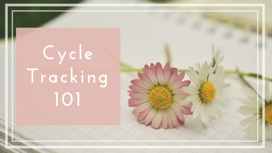 menstrual cycle tracking for beginners fertility charting